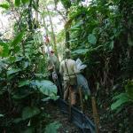 Monitoramento de fauna e flora